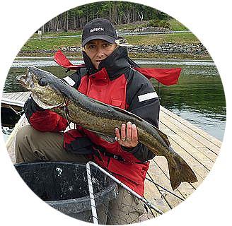 Echolot Fischfinder Tester