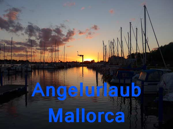 Angelurlaub auf Mallorca Big Gaming in Spanien